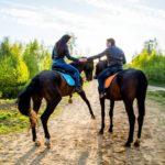 Конные прогулки в Чехии