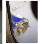 Составлен предварительный отчет о разрушении двигателя на Boeing 737 Southwest Airlines