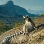 Туры в Перу и на Мадагаскар: в чем их ключевые особенности